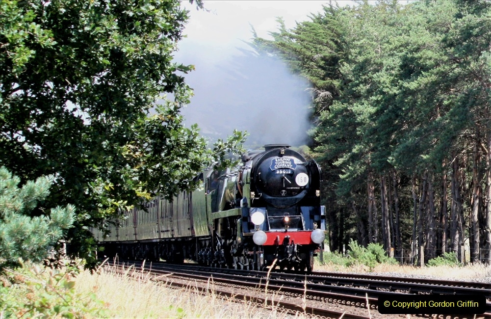 2019-07-06 Near Wareham, Dorset.  (1)