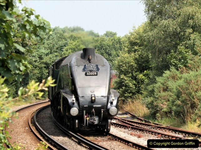 2019-07-25 Near Wareham, Dorset.  (2)