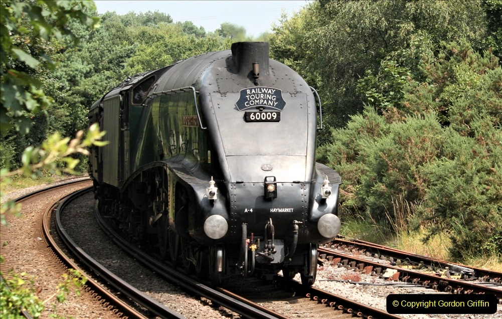 2019-07-25 Near Wareham, Dorset.  (3)