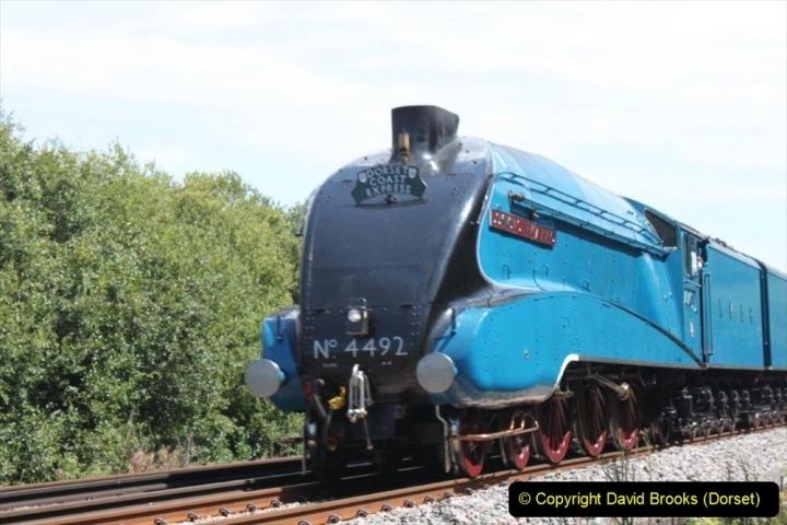 Various dates. (134) The Dorset Coast Express. 219