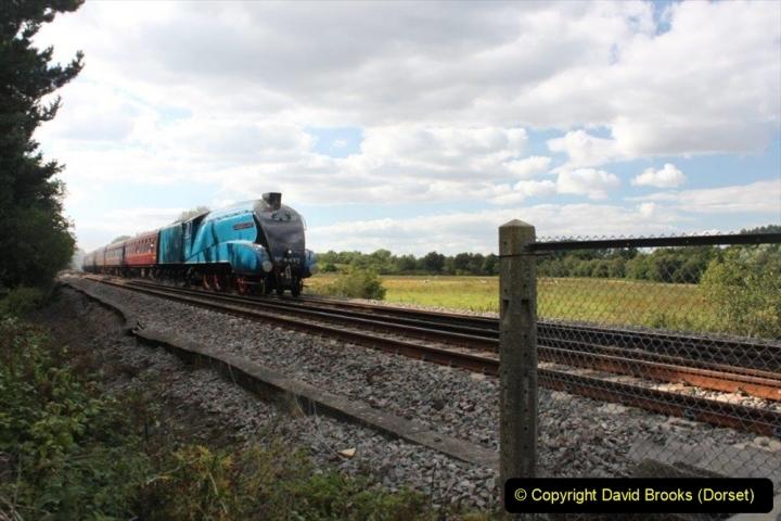 Various dates. (135) The Dorset Coast Express. 220