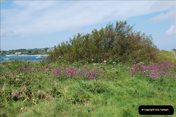 2012-05-27 The Isles of Scilly.  (54)0182