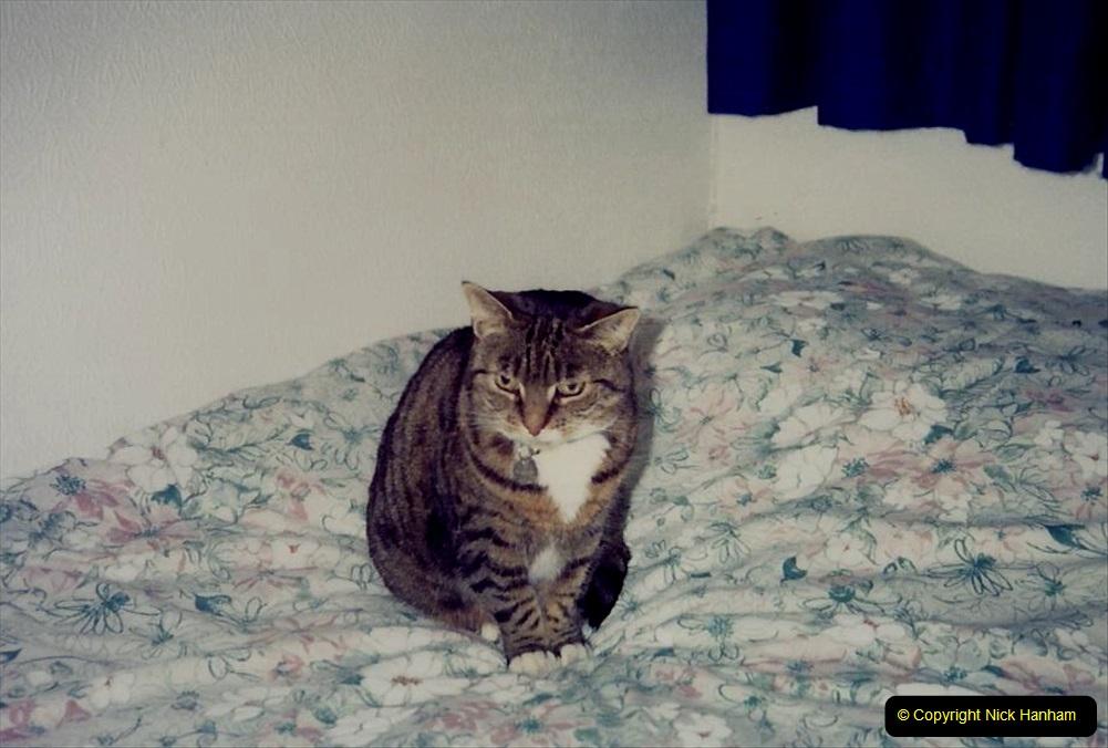 1994 Jenny. (69) 070