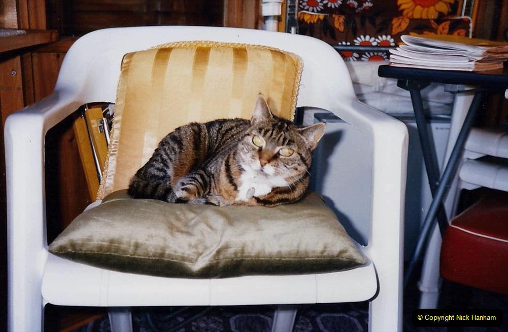 1995 Jenny. (85) 086