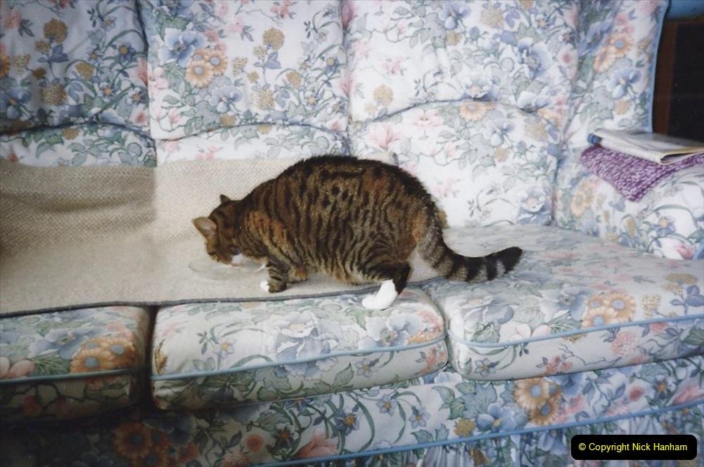 1995 Jenny. (93) 094