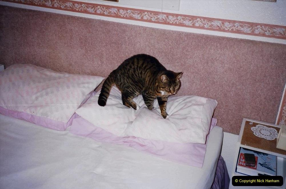 1995 Jenny. (99) 100