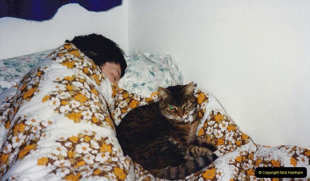 1996 Jenny. (113)  114