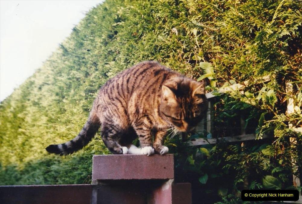 1996 Jenny. (114)  115