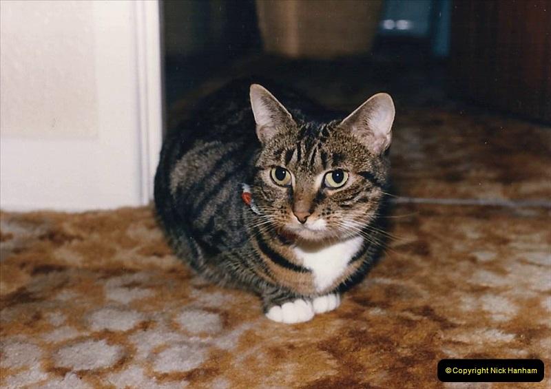 1997 Jenny. (145) 146
