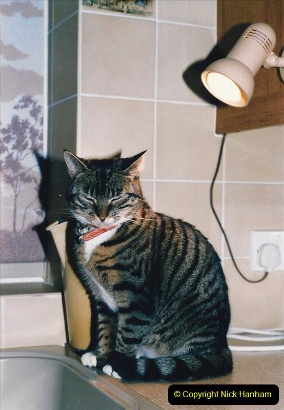 1997 Jenny. (151) 152