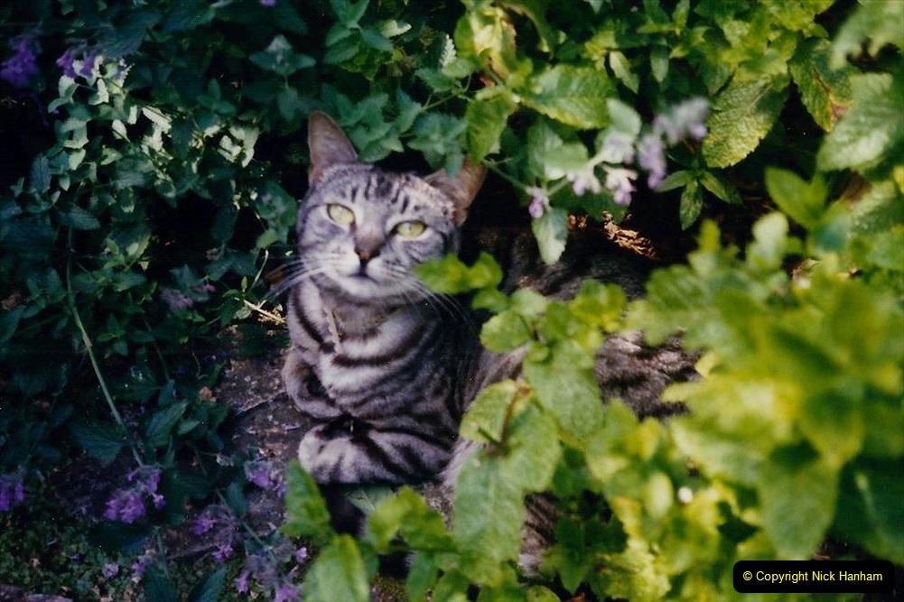 1997 Jenny. (157) Good Bye Dear Friend. 158