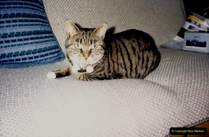 1987 Jenny. (11) 012