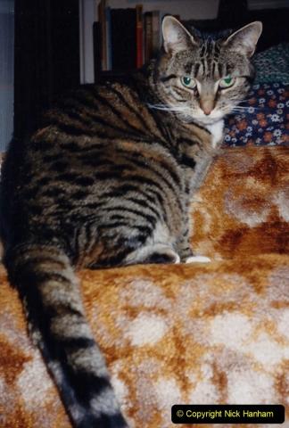 1990 Jenny (32)033