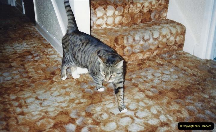 1992 Jenny. (54)055
