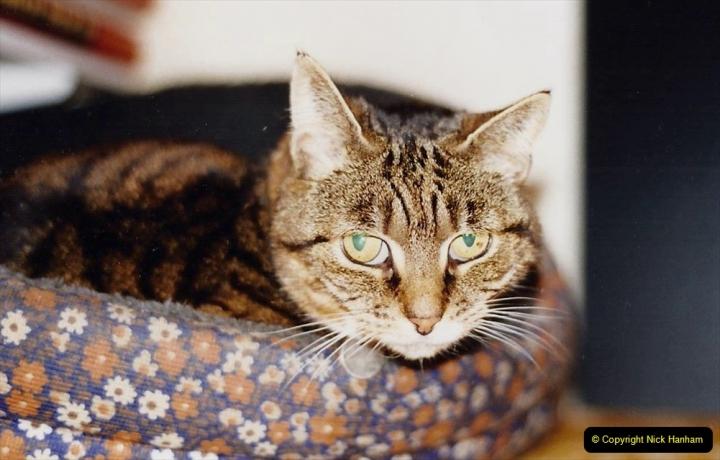 1995 Jenny. (83) 084
