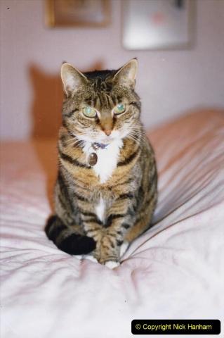 1995 Jenny. (92) 093