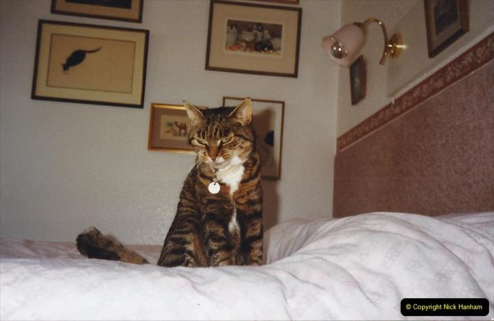 1996 Jenny. (116)  117