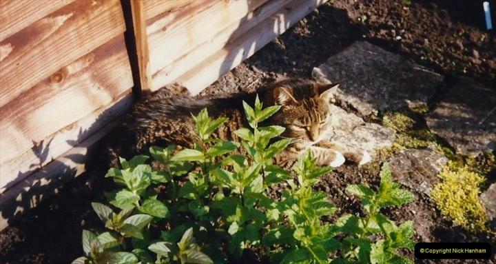 1996 Jenny. (117)  118