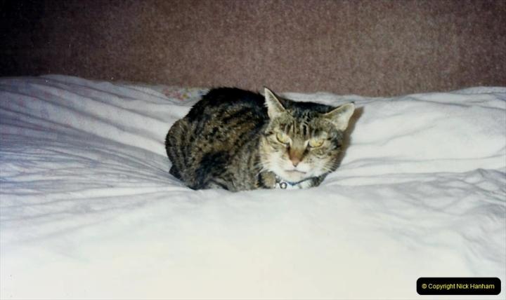 1997 Jenny. (128) 129