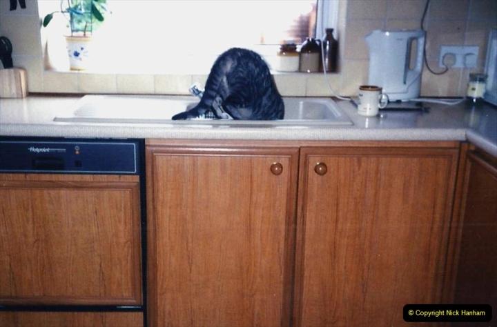 1997 Jenny. (134) Having a drink in the sink.135