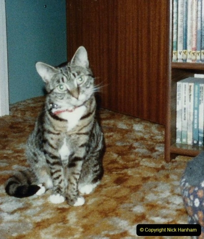 1997 Jenny. (142) 143