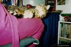 1988 Jenny. (20) 021