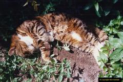 1996 Jenny. (120) 121