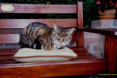 1996 Jenny. (121) 122