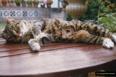 1996 Jenny. (125) 126