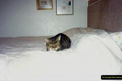 1997 Jenny. (129) 130