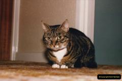 1997 Jenny. (144) 145