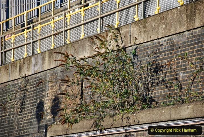 2019-12-15 London. (67) The Euston Station Garden. 067