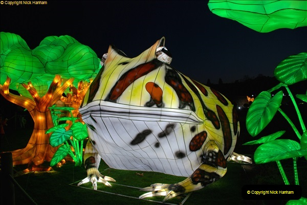 2018-11-17 Longleat Safari Park & Festival of Light.  (180)180
