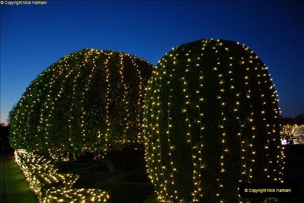 2018-11-17 Longleat Safari Park & Festival of Light.  (183)183