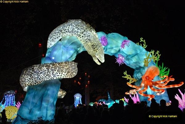 2018-11-17 Longleat Safari Park & Festival of Light.  (201)201