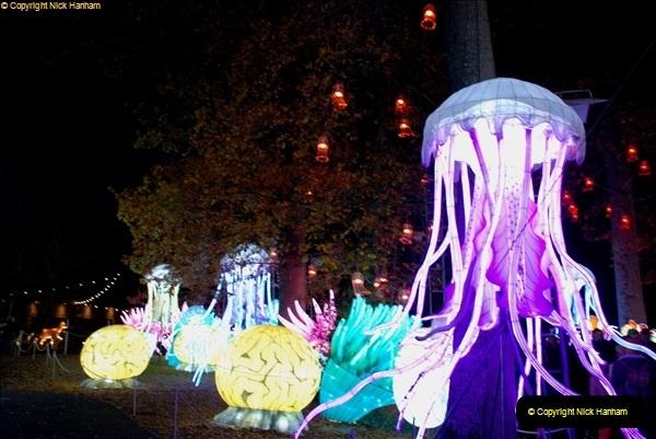 2018-11-17 Longleat Safari Park & Festival of Light.  (202)202