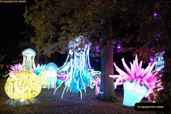 2018-11-17 Longleat Safari Park & Festival of Light.  (203)203