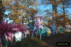 2018-11-17 Longleat Safari Park & Festival of Light.  (102)102