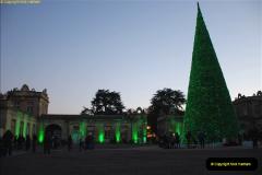 2018-11-17 Longleat Safari Park & Festival of Light.  (139)139
