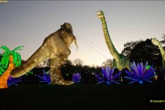 2018-11-17 Longleat Safari Park & Festival of Light.  (141)141