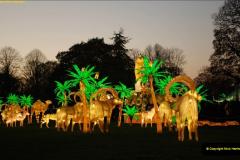 2018-11-17 Longleat Safari Park & Festival of Light.  (147)147
