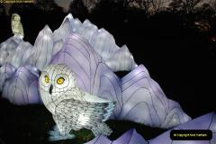2018-11-17 Longleat Safari Park & Festival of Light.  (152)152