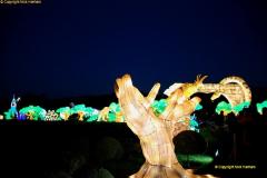 2018-11-17 Longleat Safari Park & Festival of Light.  (167)167