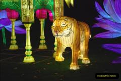 2018-11-17 Longleat Safari Park & Festival of Light.  (194)194