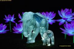 2018-11-17 Longleat Safari Park & Festival of Light.  (195)195