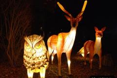 2018-11-17 Longleat Safari Park & Festival of Light.  (208)208