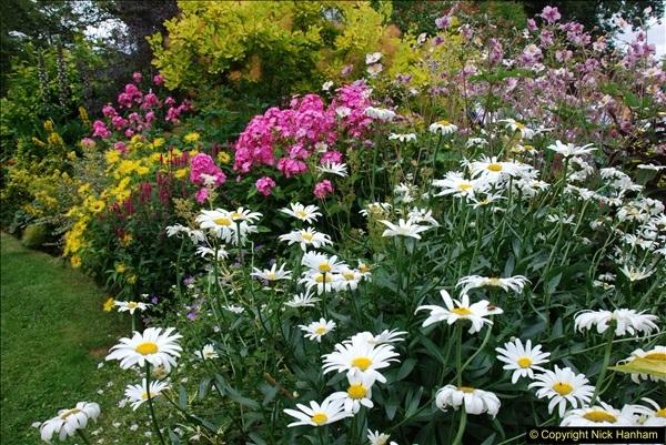 2015-08-09 Open Garden in aid of the Dorset Cancer Centre Holt, Wimborne, Dorset. (38)054