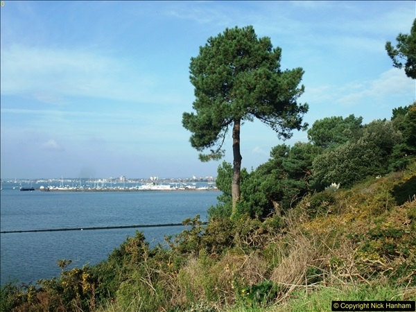 2015-10-20 Evening Hill, Poole, Dorset.  (14)089