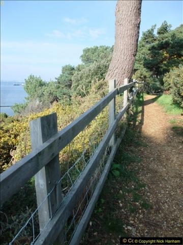 2015-10-20 Evening Hill, Poole, Dorset.  (19)094