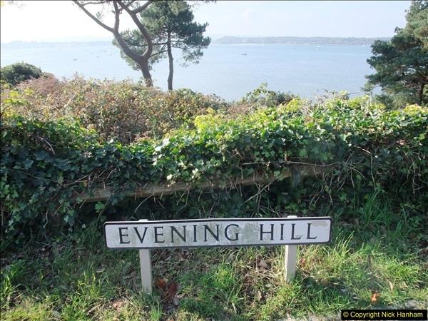 2015-10-20 Evening Hill, Poole, Dorset.  (21)096